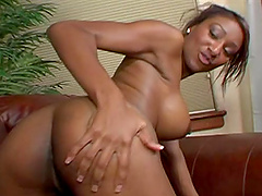 Bootyful ebony Shi Reeves gets hammered by white muscle stud