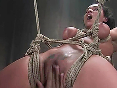 Charley Chase gets her pussy toyed and banged by Mark Davis in BDSM vid