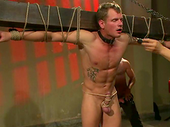Succulent Josh West And Trent Diesel Like To Play Torturing Games