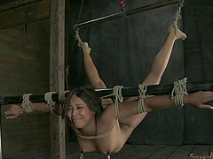 Crucified slave tortured using toy while yelling lovely